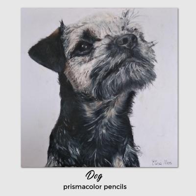 Dog-prismacolor-Elisa-Neri.jpg