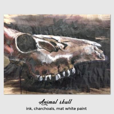 animal-skull-Elisa-Neri.jpg